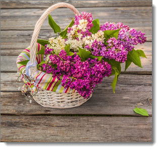 may_day_basket
